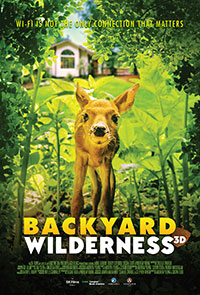 Backyard Wilderness 3D poster
