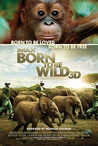 Born to be Wild 3D poster